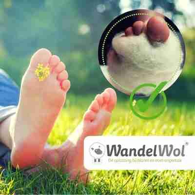 WandelWol Antidruk Schapenwol Teenbescherming 10 gram