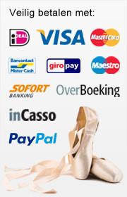 betaalmogelijkheden danswinkel